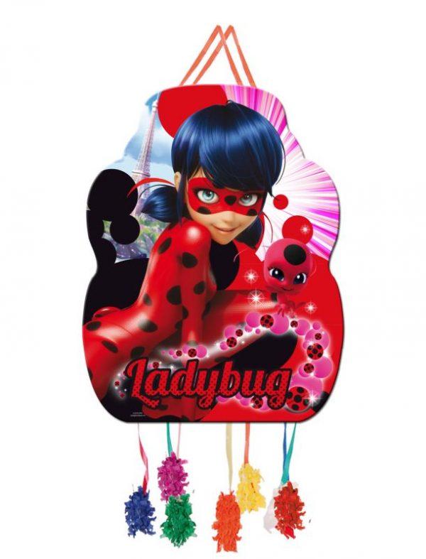 pinhata ladybug